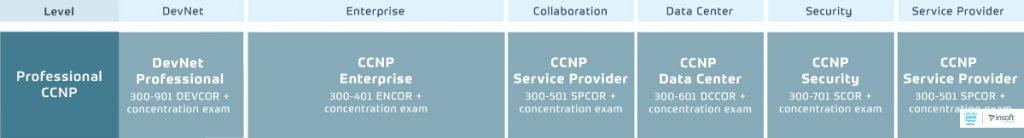 Cisco-Certification-And-Training-Program-Portfolio-2.0-Professional-Level-CCNP